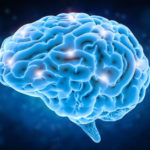 The European Brain Research Area (EBRA) project launched