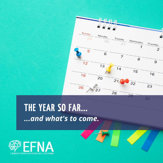 EFNA-Year in Review